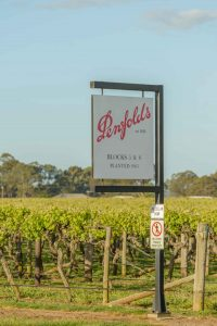 Penfolds wine was fake